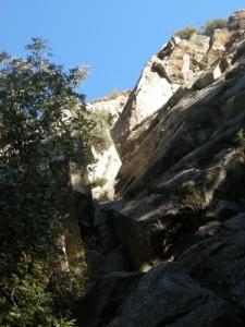 Via Capricciosa
