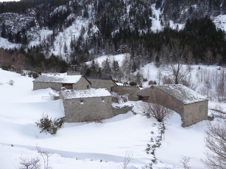 Ramio de camino a Fontverd en invierno