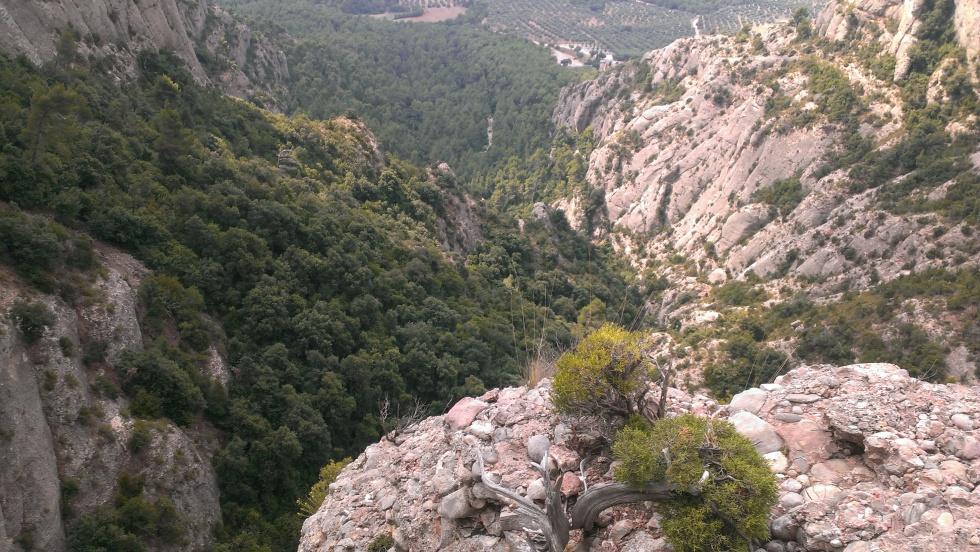 Via Esparraguera Montserrat