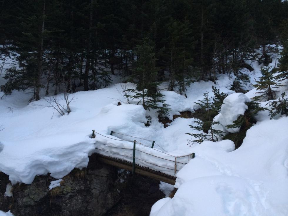 Segundo Puente Comapedrosa